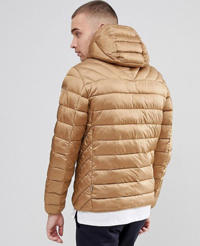 Hooded Quilted Jacket in Beige