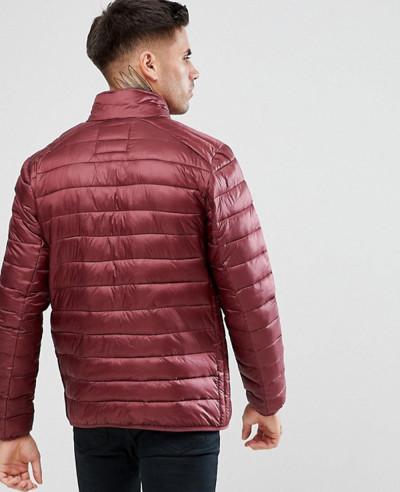 Padded Jacket In Burgundy